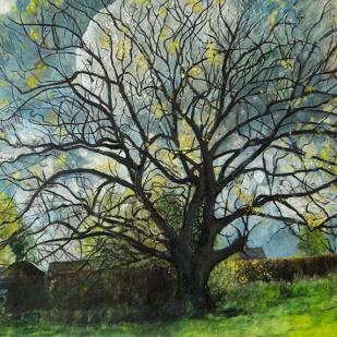 kath-wallace-artist-painting-historic-oak-tree