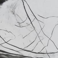 River drawing 5